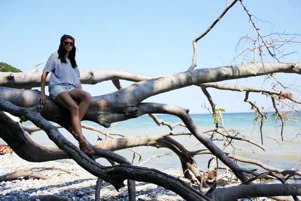 Weekend in Rügen island – What to do