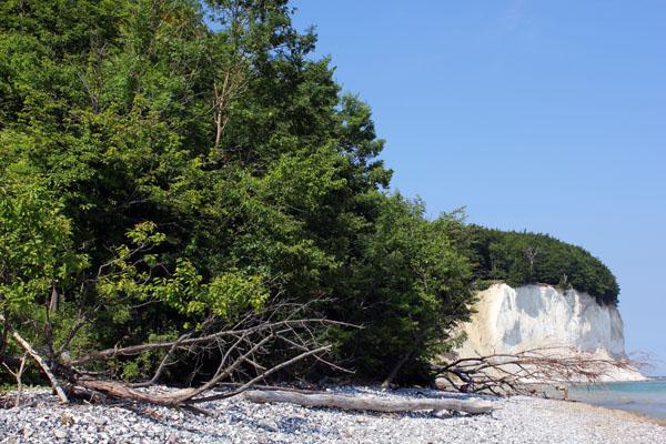 Weekend in Rügen Island - Chalk cliffs in Jasmund National Park