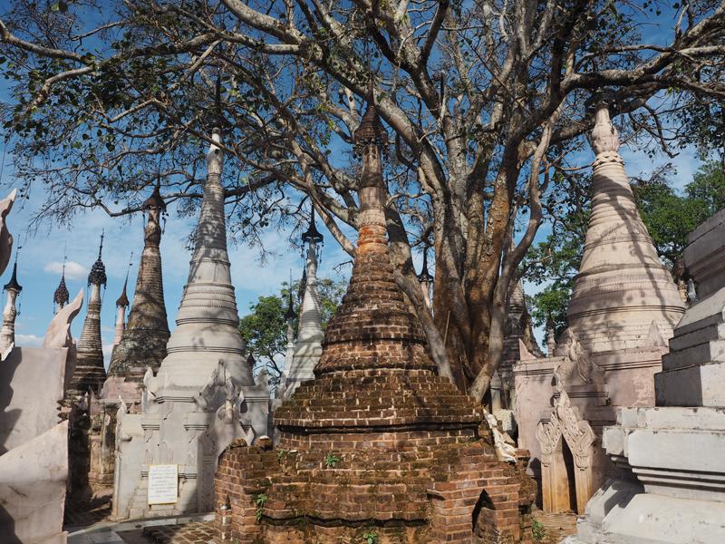 Kakku pagoda Myanmar Burma