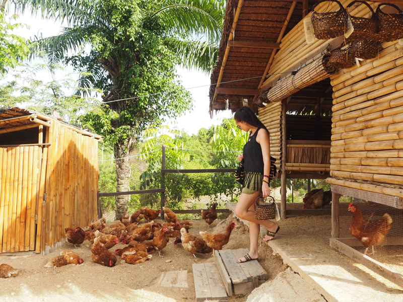 amandine travel blogger egg farm six senses koh yao noi organic food luxury-boutique hotel resort