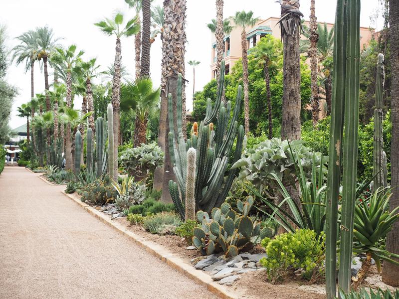 La Mamounia luxury hotel Marrakech garden