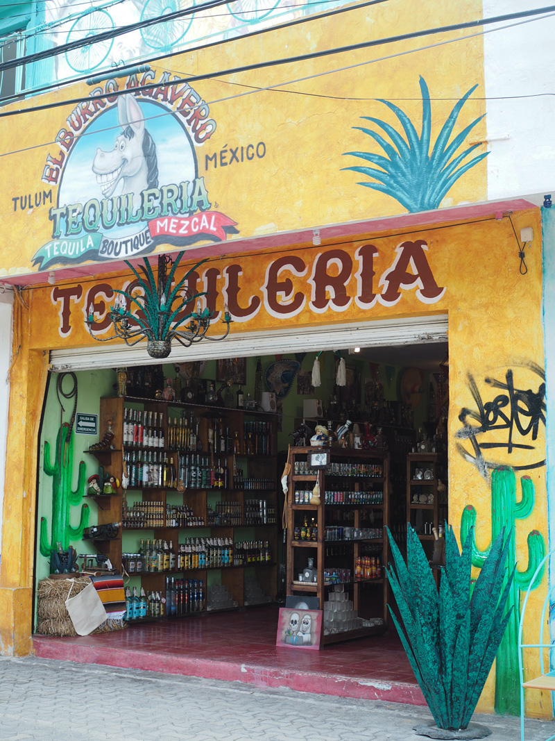 Tips Tulum town Mexico buy Tequila tequileria