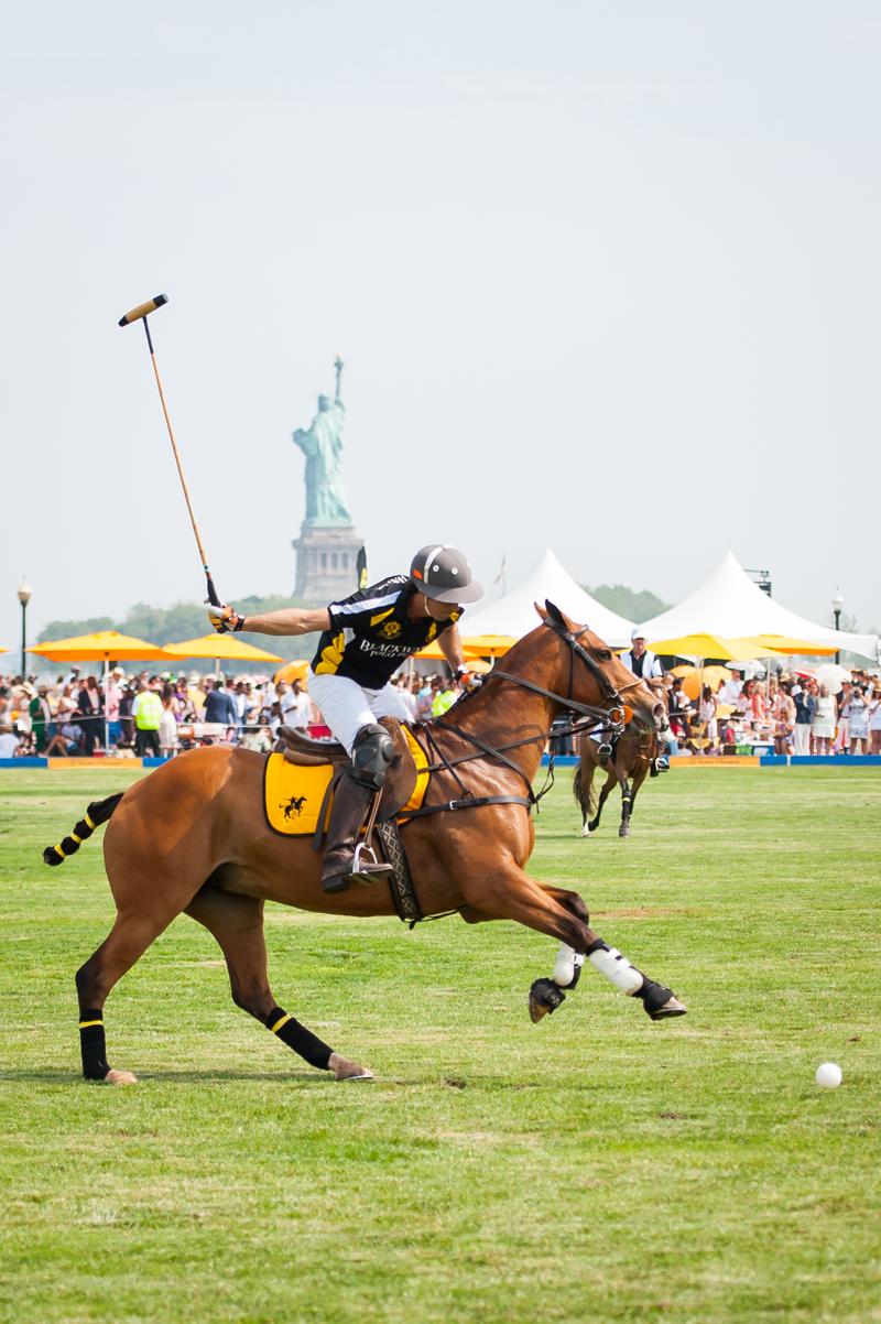 Horse at veuve Clicquot Polo Classic