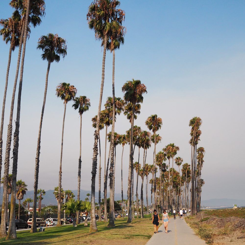 Santa Barbara urban wine trail and bike tour | The American Riviera