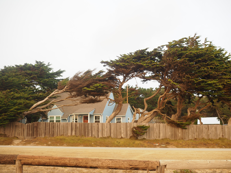 California road trip highlight highway 1 Pacific road Cambria town