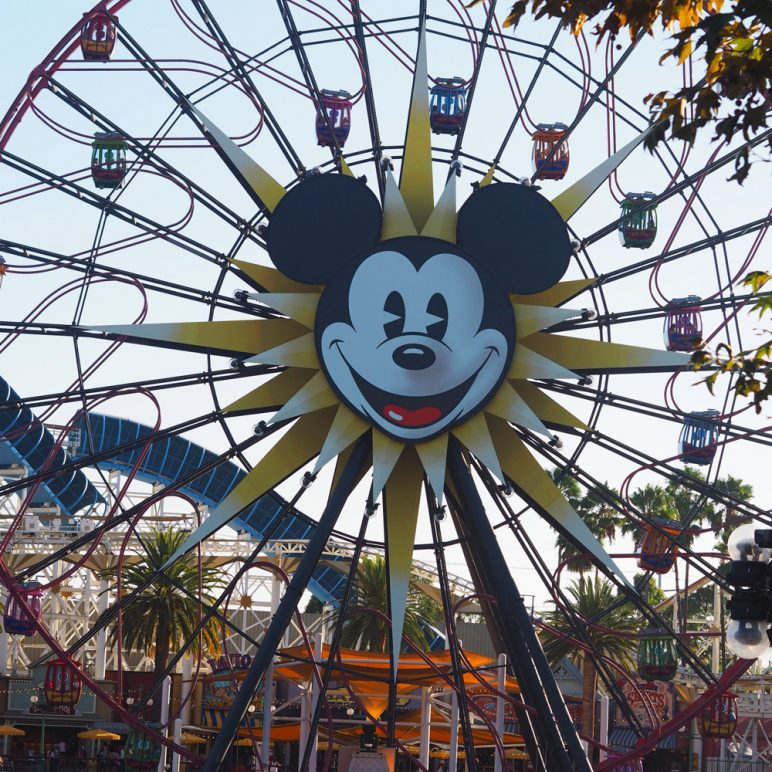A day in Disneyland California