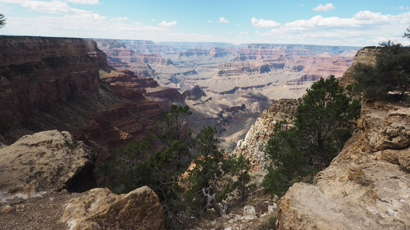 California road trip - In Arizona to see the grand canyon south rim