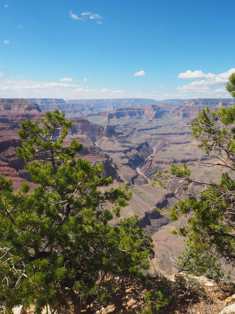 What to see in Grand Canyon in one day - South Rim Hopi point