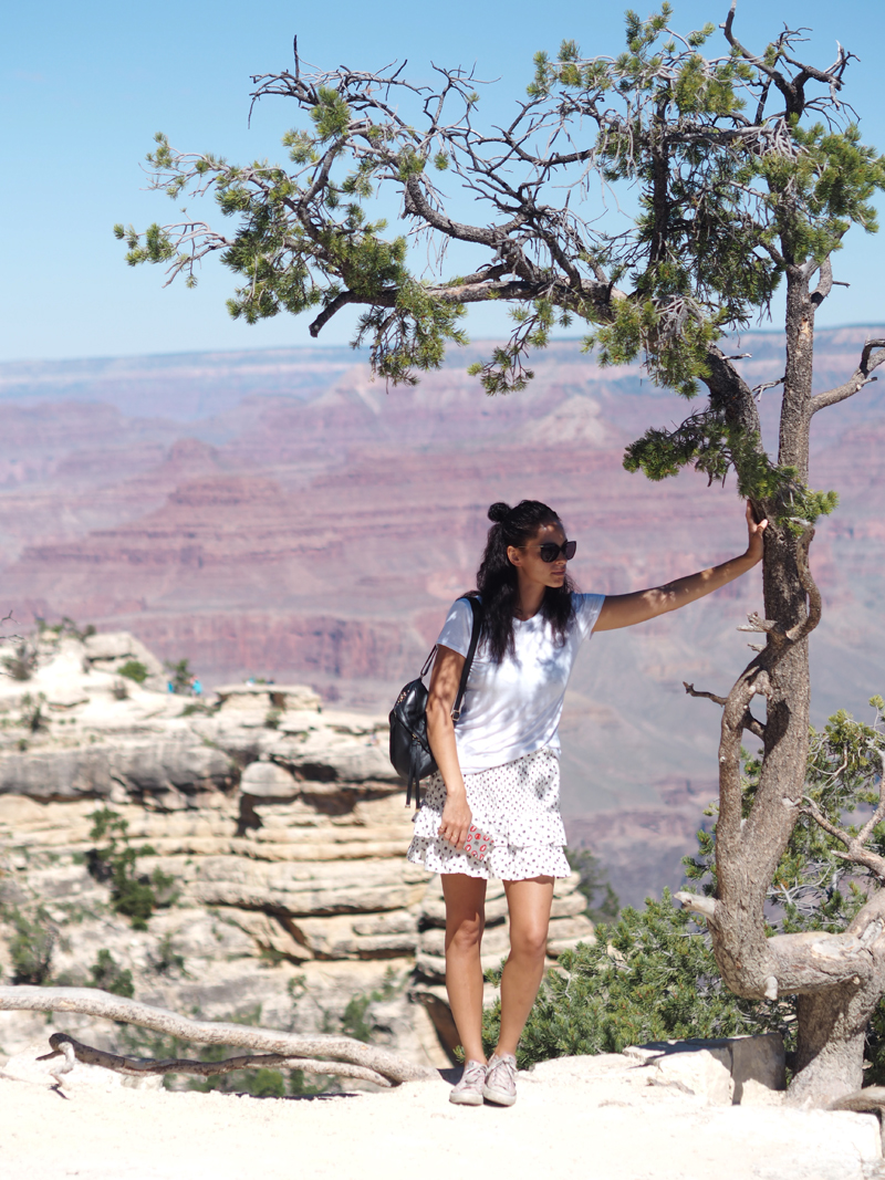 What to see in Grand Canyon in one day - South Rim