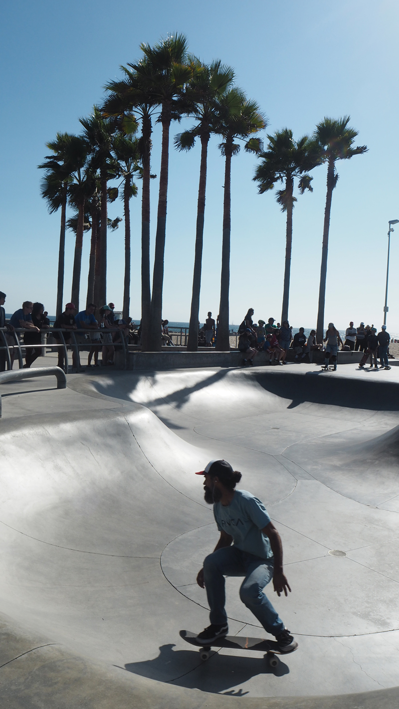 Skaters Venice beach Los Angeles