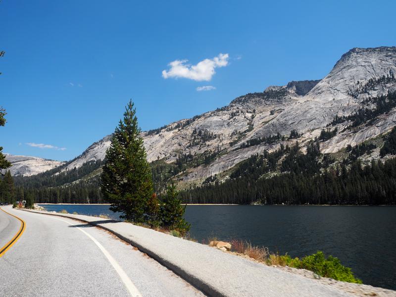 road Yosemite California road trip