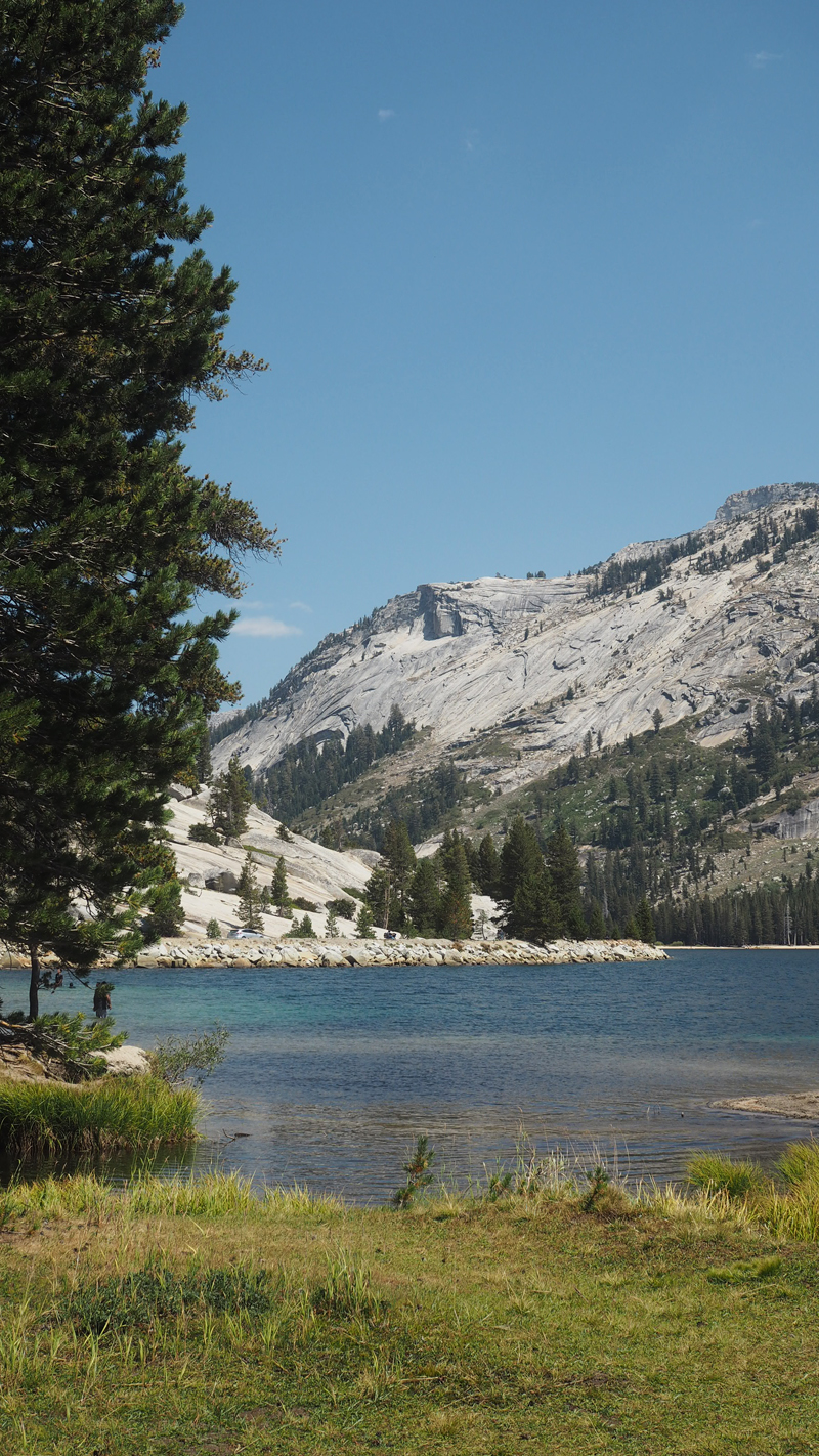 Tenaya Lake Yosemite California road trip