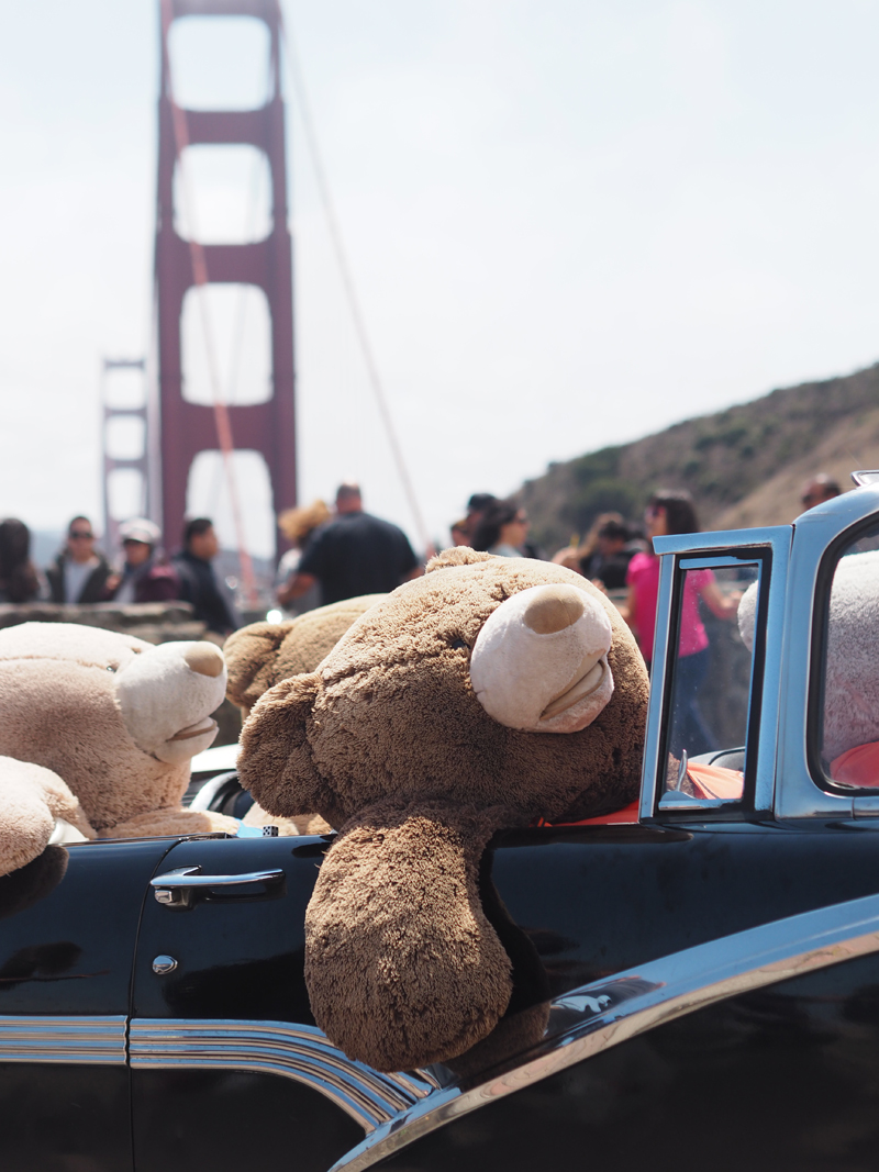 A day in San Francisco Teddy Bear Golden Gate bridge