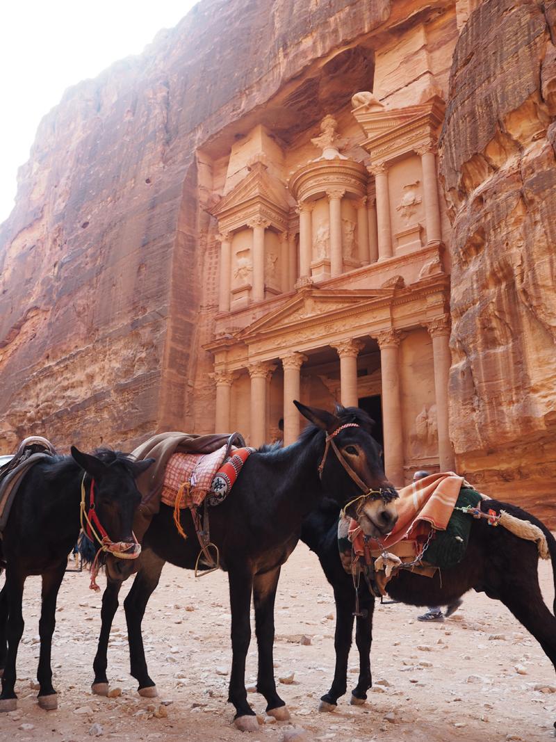 traveling to Jordan Petra the treasury