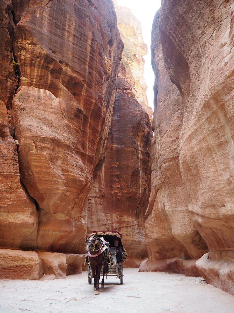 Jordan itinerary 8 days - Jordan places to visit - Traveling to Jordan Petra the treasury