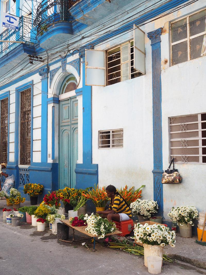 Cuba-Havana-flower-street-vendor