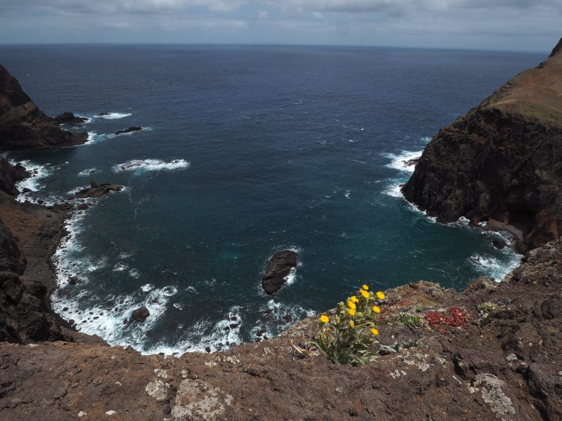 most beautiful Madeira walks Vereda da Ponta de Sao Lourenco Hike Madeira