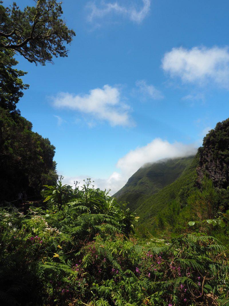 things to do in Madeira Island Madeira walks Levada das 25 fontes hike Madeira
