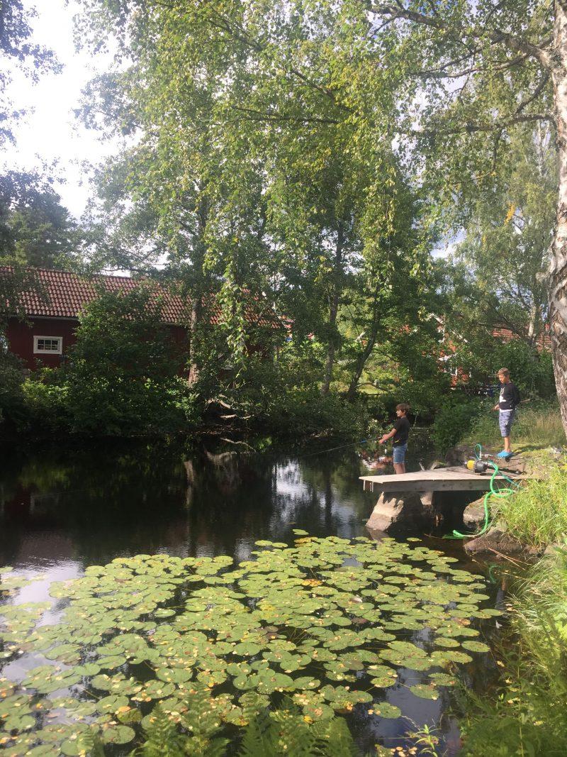 Mörtfors Småland Kalmar Sweden 4