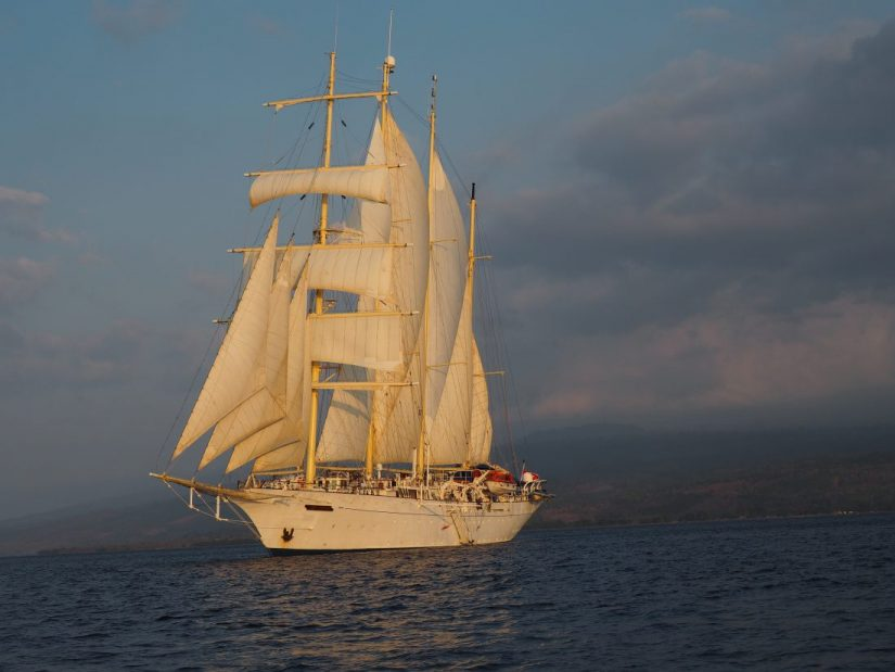 sailing cruise Star clipper boat
