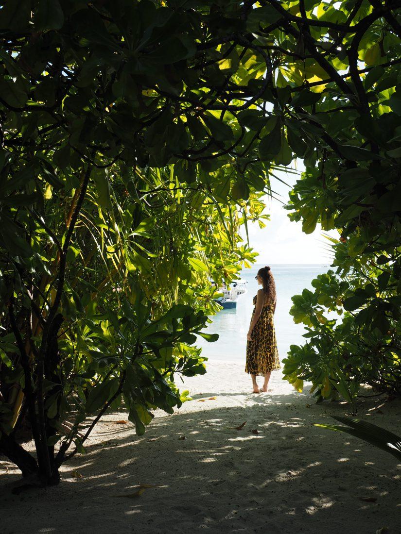 Maafushivaru travel blogger