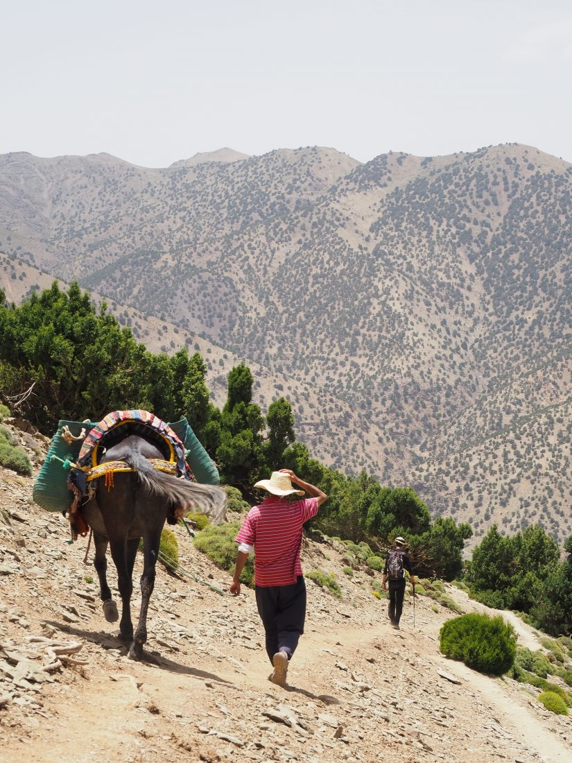2 days trek Atlas mountains 1