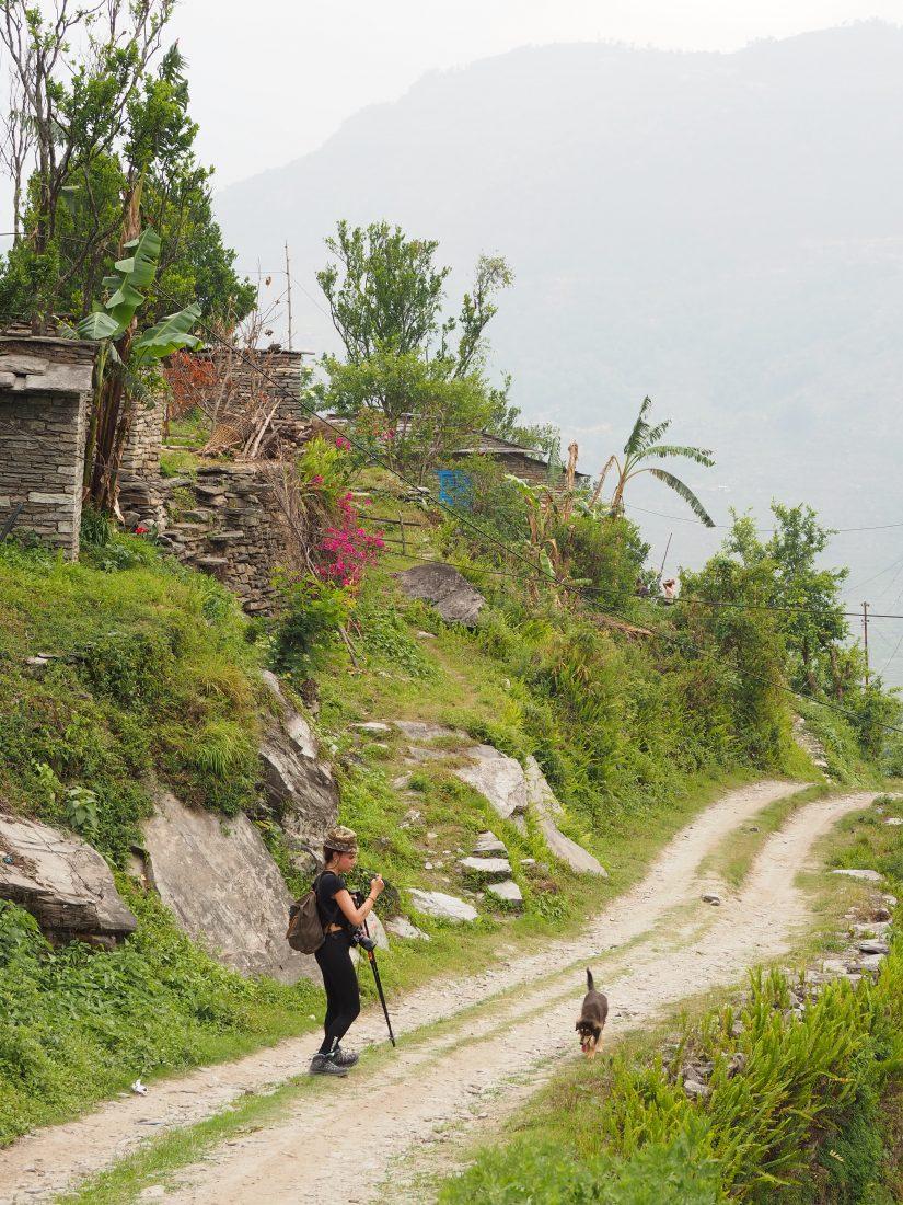 Short trek in Nepal - Mohare Donda trek 13