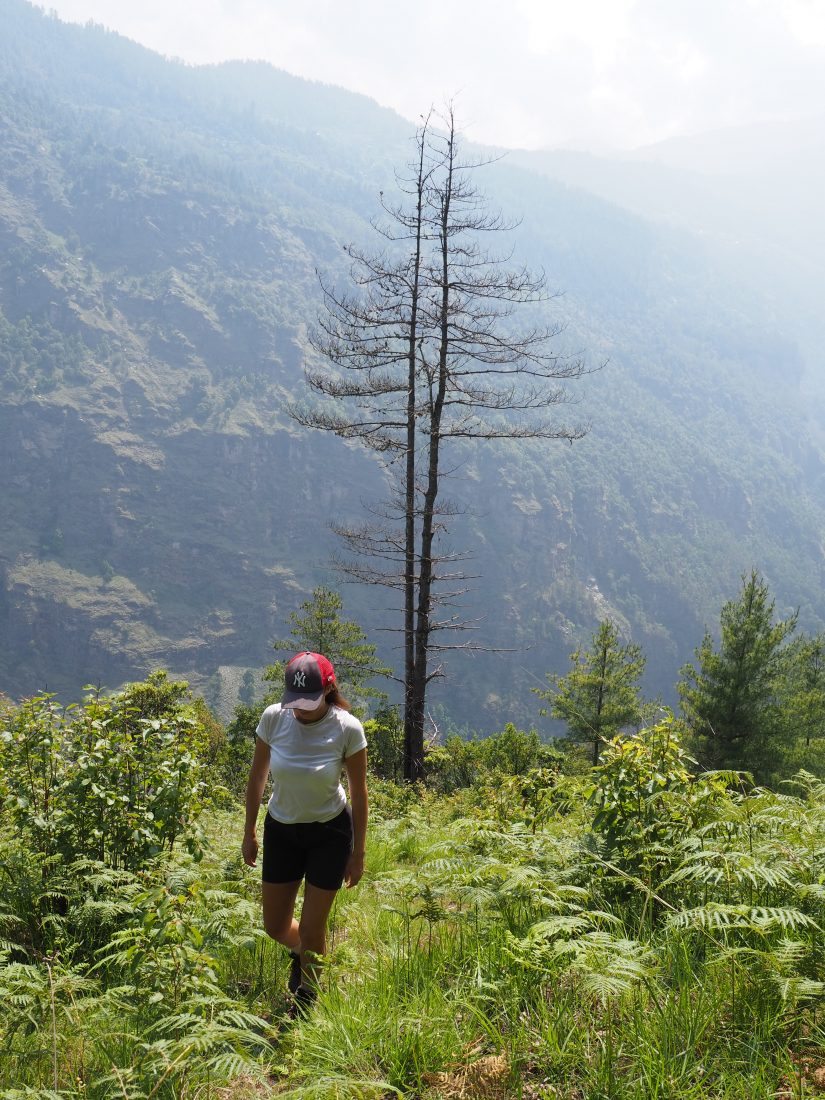 Short trek in Nepal - Mohare Donda trek 20
