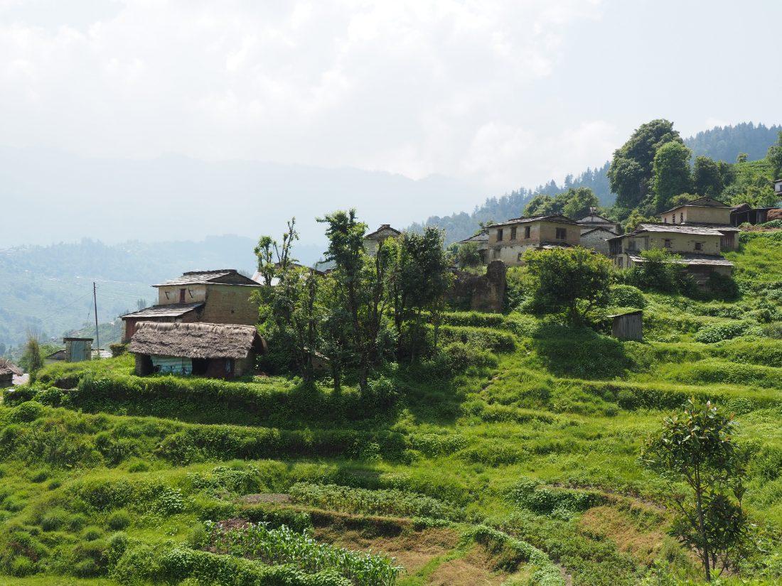 Short trek in Nepal - Mohare Donda trek 21