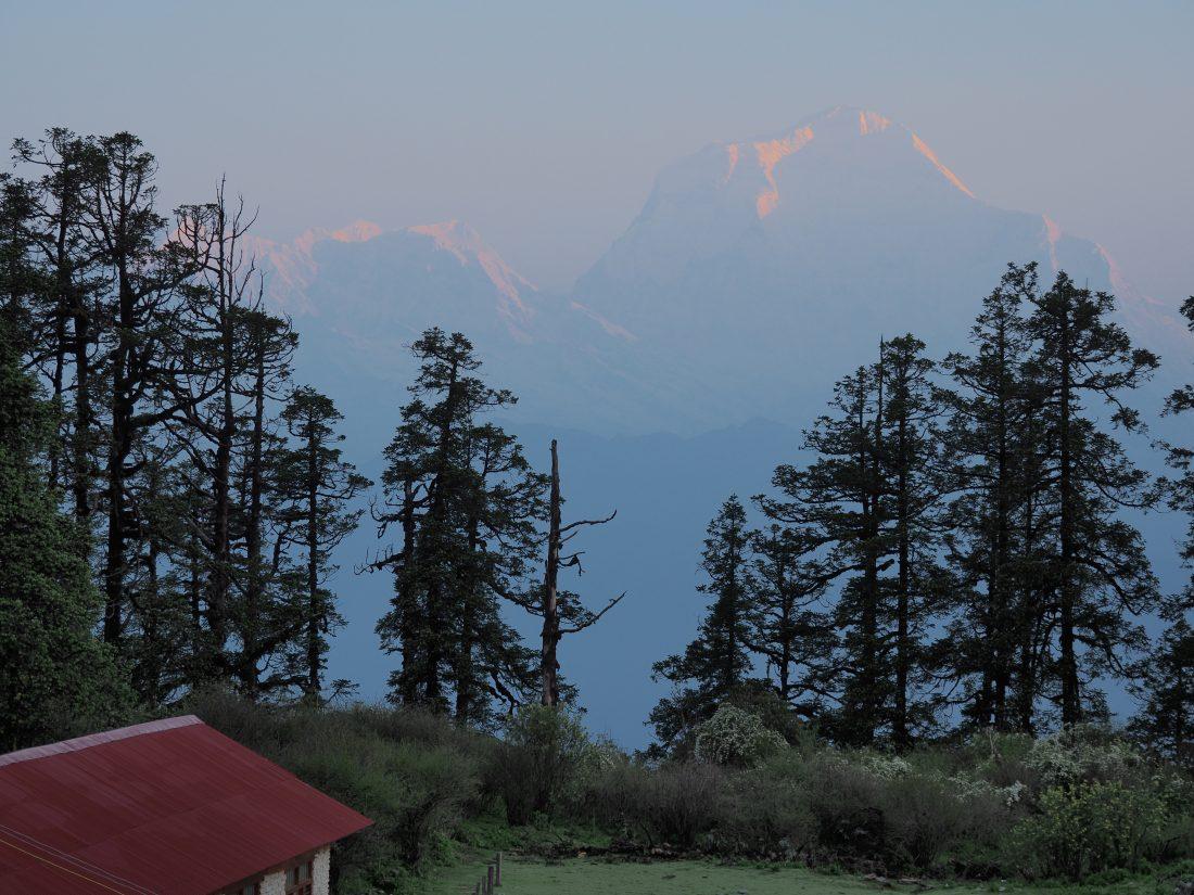 Short trek in Nepal - Mohare Donda trek Annapurna south
