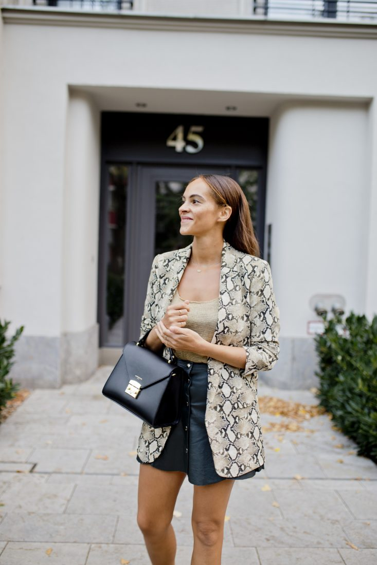 German fashion blogger Fall 2018 look snake print blazer Fiorzeri Le Parmentier bag