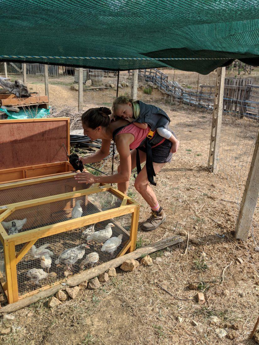 Holidays Elba Island Tips Agrotourism