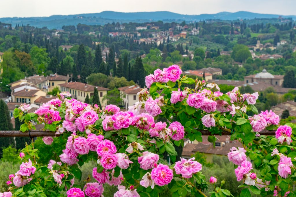 Tuscany Roadtrip Wine tasting