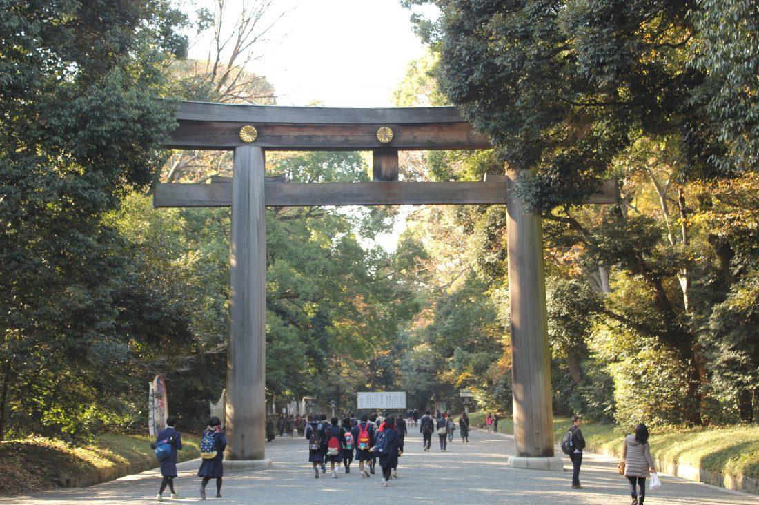 one week in Tokyo itinerary Meiji shrine