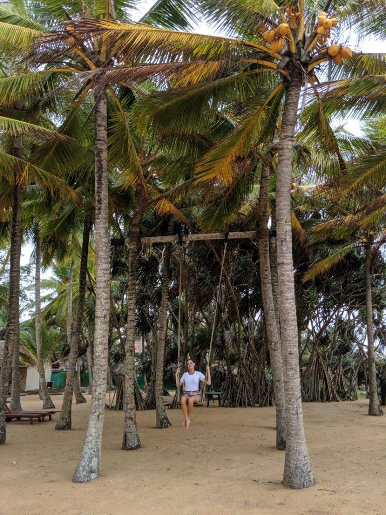 Ayurveda and yoga retreat in Sri Lanka - Review Siddhalepa resort garden