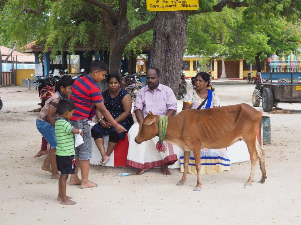 Sri Lanka itinerary - Sri Lanka travel blog Nainativu Nagapooshani Amman temple