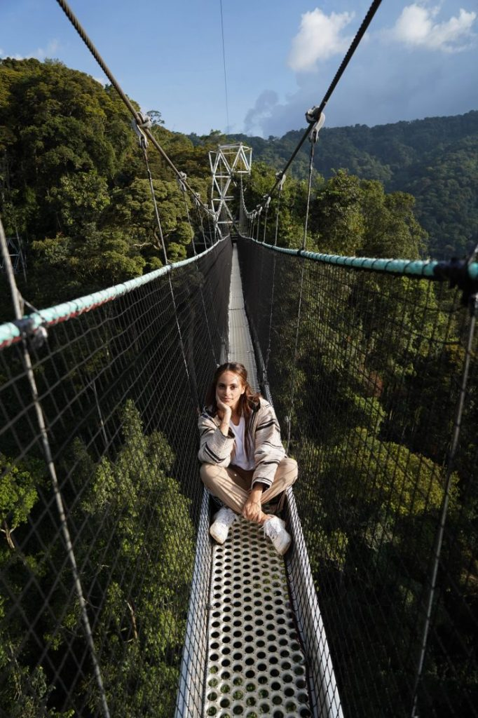 Things to do in Rwanda Canopy walk Nyungwe national park