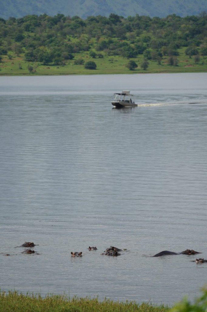 boat safari in Akagera - Rwanda