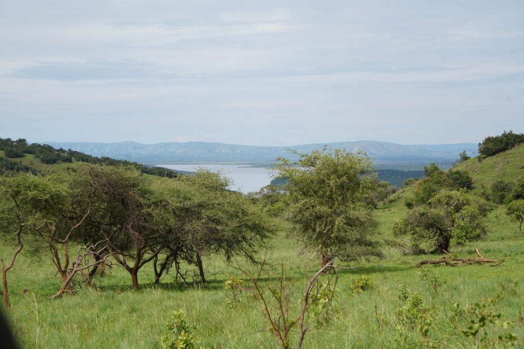 safari in Akagera - Rwanda landscape savannah
