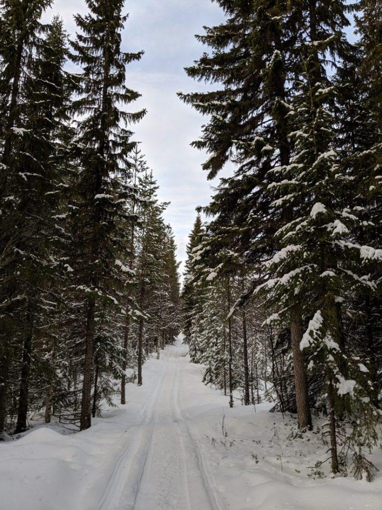 Visit Jamtland county Sweden winter wonderland