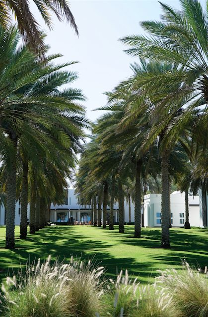 Where to sleep in Muscat - Chedi Muscat Palm trees